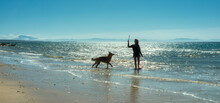 Woman Playing With Her German Shepherd Dog On A Sandy Beach At The Edge Of The Ocean In Evening Light With Gentle Surf