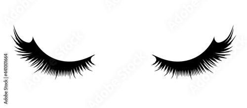 Fotografie, Obraz Women's fluffy eyelashes