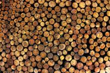 Round Cut Of Trees Masonry Vertical Bars Firewood Log