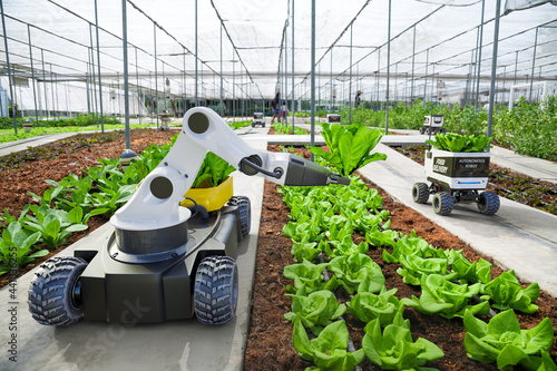 Fotografiet Agriculture robotic and autonomous car working in smart farm, Future 5G technolo