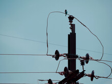 Birds Seating Upon Electric Wire On Risky Place Sky Background.