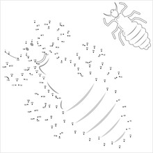 Louse Icon Connect The Dots, Lice Icon, Wingless Insect, Obligate Parasite, Puzzle Containing A Sequence Of Numbered Dots