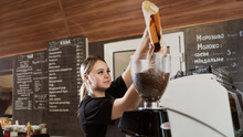 Professional Coffee Grinder And Barista Girl Pouring Arabica Coffee Beans Into The Grinding Tank. Banner. Cafe And Young Woman Grinding Coffee To Make Hot Espresso.