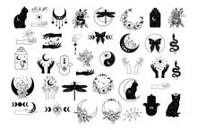 Celestial Boho Vector Illustration Set, Magic Collection, Mystic Elements