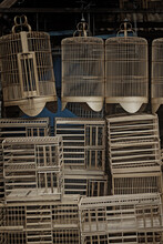 Bird Cage Pile