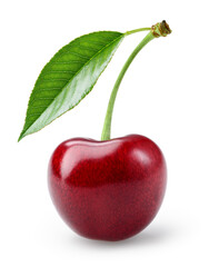 Cherry isolated. One cherry with leaf on white background. Sour cherri on white. Cherry leaf. Full depth of field.
