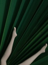 Close-up Of Doll's Legs On A Large Diameter Green Palm Leaf Background