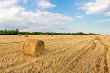 Scenic View Of Many Rolled Hay Bales On Harvested Golden Wheat Field At Countryside Against Blue Sky. Agricultural Rural Nature Scene. Country Farming Summer Landscape Background