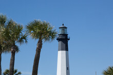 Tybee Island Lighthouse With Palm Trees