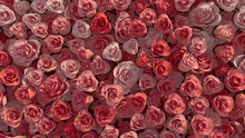 Romantic, Beautiful Flower Blooms Arranged In The Shape Of A Wall. Elegant, Bright, Roses Composed To Create A Red Floral Background. 3D Render