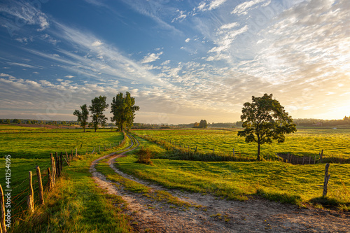 Slika na platnu A field road between pastures and meadows at sunrise near the village of Gamerki