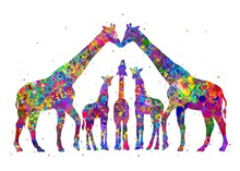 Giraffe Family Animal Watercolor, Abstract Painting. Watercolor Illustration Rainbow, Colorful, Decoration Wall Art.