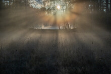 The Sun Piercing The Fog With Its Rays