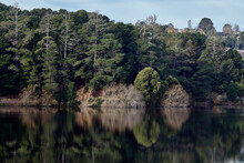 Daylesford Lake With Reflection Of Trees In Water