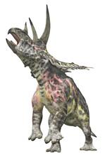 Dinosaurier Pentaceratops, Freisteller