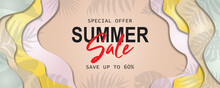Summer Banner Template For Advertising Summer Arrivals Collection Or Seasonal Sales Promotion