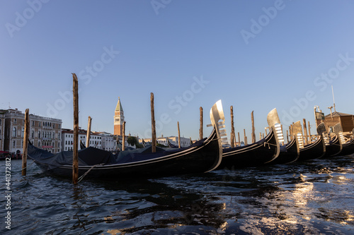 Tela Parked gondolas in front of Punta della Dogana with view of the campanile on St