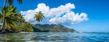 Opunohu Bay On Moorea Island, French Polynesia