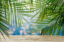 Summer Background Of Sand With Green Palms And Sea Landscape