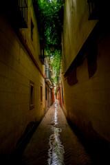 Ciasna uliczka w Sewilii
