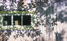 A Wall Of Old, Cracked Planks With Traces Of Faded Lavender Paint, Small Carved Glass Windows And Beautiful Sun Shadows From The Foliage.