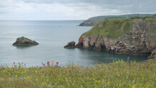 View Of Berry Head In Brixham