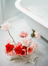 Red And Pink Roses By A French Iron Claw Bath