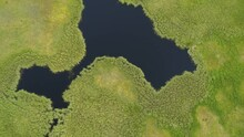 Aerial Footage Of Flying Over Green Marshland In Finland In Summer.