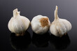 Drei Knoblauch-Knollen / Zwiebeln auf einem dunklen Hintzergrund freigestellt (Küchenzutat)
