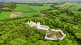 Fototapeta Kwiaty - Szlak Orlich Gniazd-zamek Pilcza w Smoleniu