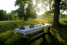 Outdoors Summer Scene Party Table On Sunset. Old Wooden Table Under Trees With Food Plate. Midsummer Celebrating In Latvia, Ligo Festive