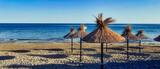 Parasole plażowe na pustej plaży