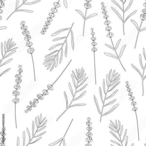 Tapety Prowansalskie  wzor-kwiaty-lawendy-grafiki-czarno-biale-kolorowanie-ilustracji-wektorowych-kwiaty-prowansji