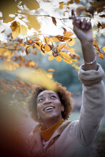 Happy Young Woman Reaching For Autumn Leaves On Tree Branch