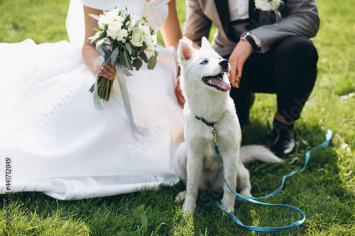Fotografering Bride with groom with their dog on their wedding day