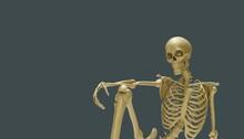 Sitting Chilled Skeleton Model 3d Render