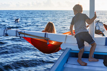 Happy Children Sit On Boat. Dolphins Watching Adventure Tour On Tropical Islands. Water Activity, Active Children Lifestyle, Summer Vacation Travel With Kids At Family Resort.