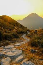 Rock Road With Silvergrass Alongside Under Sunset In Sunset Peak, Hong Kong