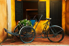 Tricyele And Potted Plant On Bicycle Outside House In Vietnam