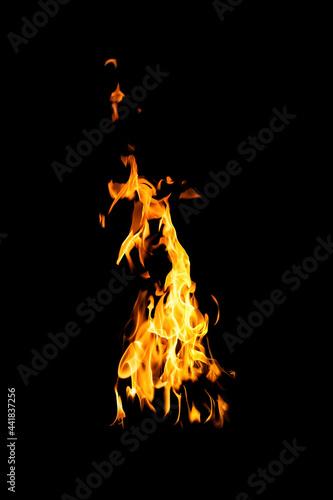 Obraz na plátne Fire flames on black background
