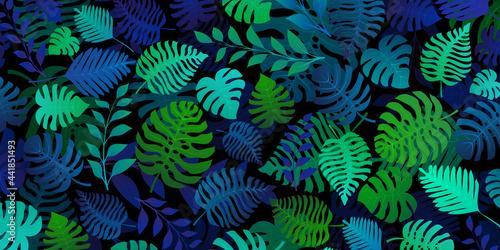 Fototapeta Background with exotic jungle plants