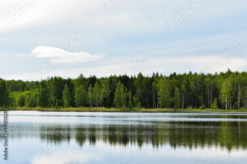 Tela Scenic View Of Lake By Trees Against Sky