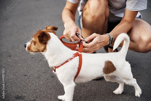 Tablou Canvas Owner Attach Leash To The Dog On The Walk