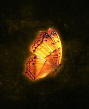 Glowing Butterfly In The Galaxy