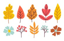 Set Of Bright Autumn Leaves, Rowan Berry Flowers, Twigs. Colored Vector Illustration For Seasonal Design.