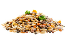 Food For Canaries, Parrots, Finches. Mixed Seeds For Bird Feeding Isolated On White Background. Food For Exotic Birds Isolated On White Background. Mix For Feeding Canaries, Finches, Parrots.