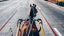 POV Point Of View Horse Drawn Carriage On A Street In Manila, Philippines
