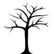 Drzewo bez liści