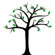 Drzewo z kilkoma liśćmi