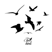 Flying Seagulls. Free Birds. Vector Illustration